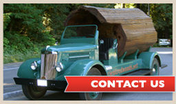 photo of antique truck with log-shaped camper shell